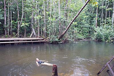 Refreshing Rainforest River Swim