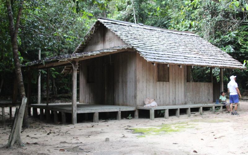 Amazon Rainforest Tiny House
