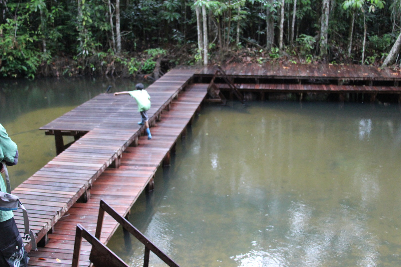 Rainforest River Swimming Deck
