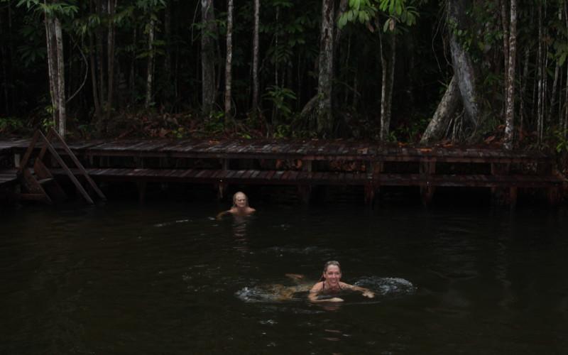Rainforest Swimming Hole Fun