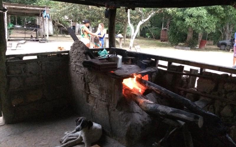 Rainforest property farm stove