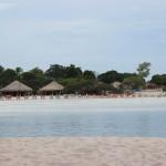 Amazon White Sand Beaches