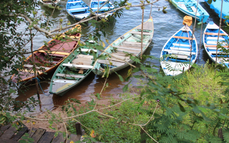 Day boats in Alter do Chao
